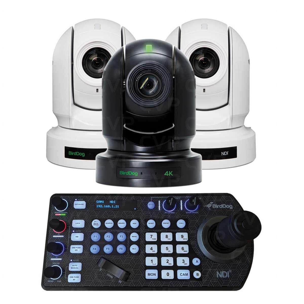 south african bbw webcam