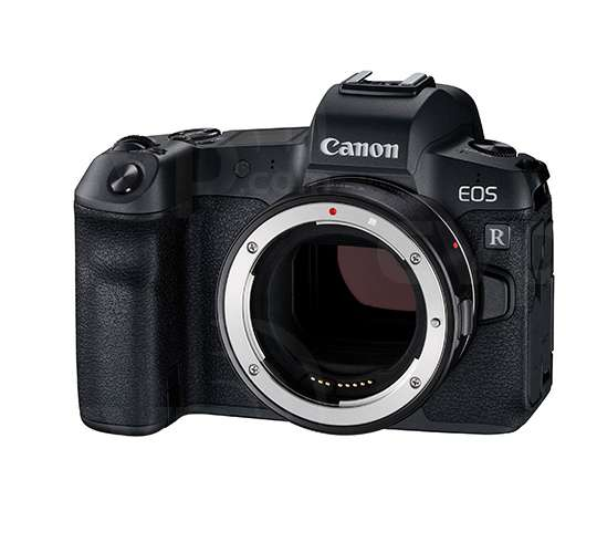 Buy Canon Eos R 31 7mp Full Frame Digital Single Lens